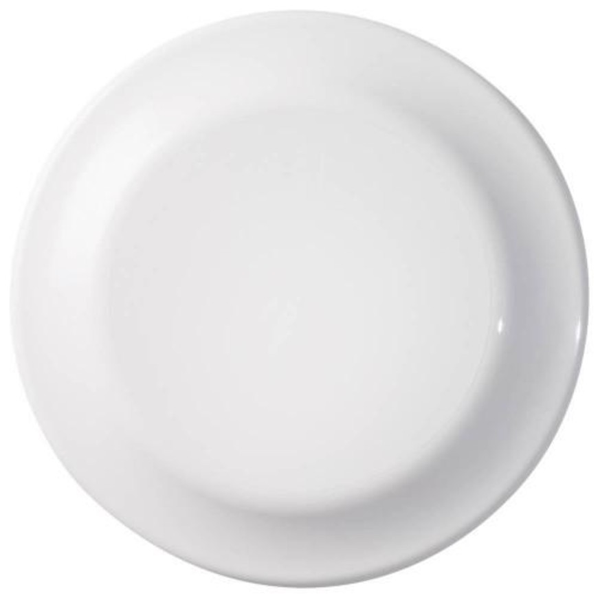 SNT FRISBEE